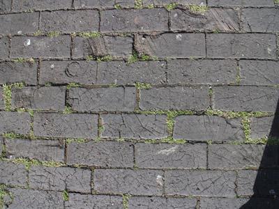 つれづれ ロンドンの木畳(造語)_b0199526_23431136.jpg