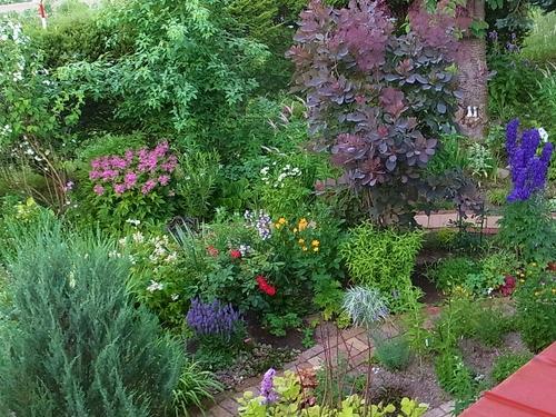 ラベンダーと庭の花_e0326953_1352153.jpg