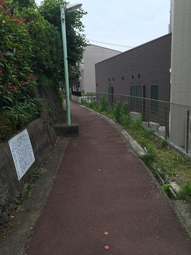「ブラタモリ」で土橋通りの由来や当院裏の四ツ谷用水が紹介されました!_a0119856_21135677.jpg