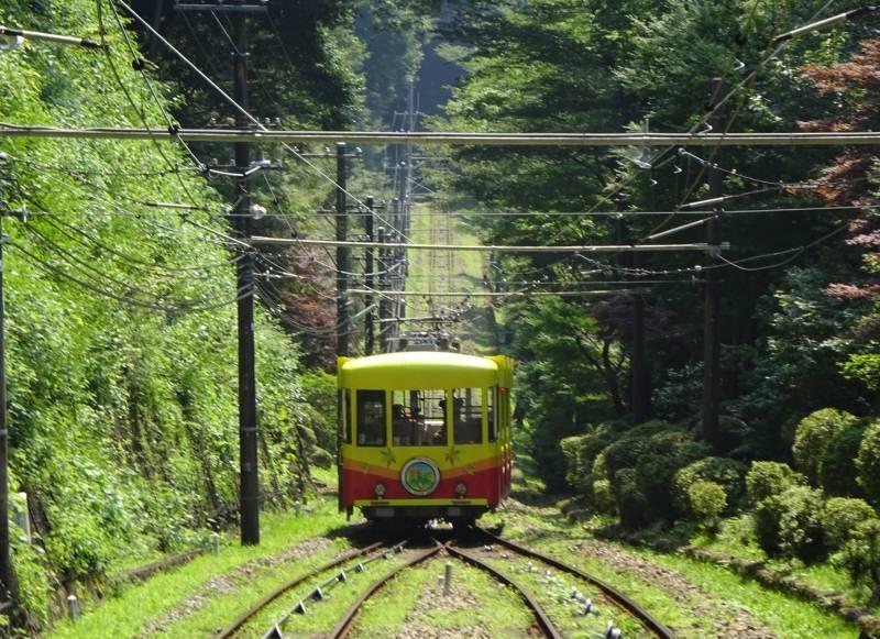 高尾山で総会_f0059673_19045934.jpg
