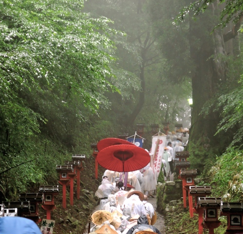 金剛山 れんげ大祭!_e0111396_15402485.jpg