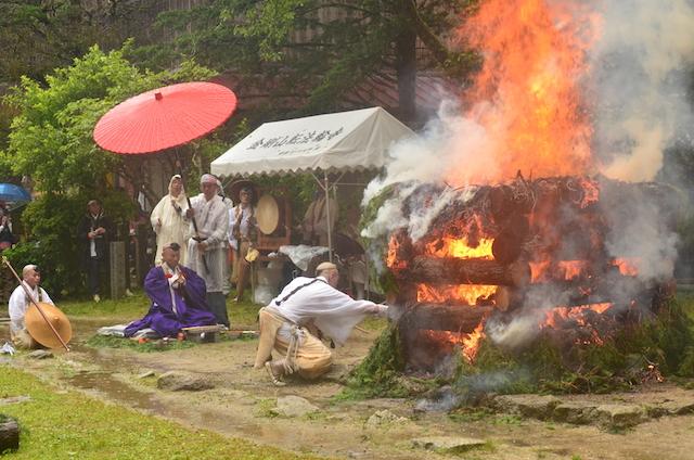 金剛山 れんげ大祭!_e0111396_1713012.jpg
