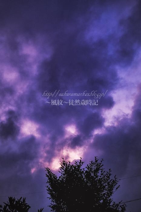 盆の夕空。_f0235723_21344891.jpg