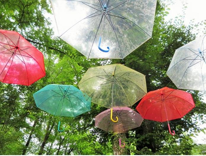 みんなの「紫陽花&雨の季節らしいすてきな一枚」をご紹介!_f0357923_18145347.jpg