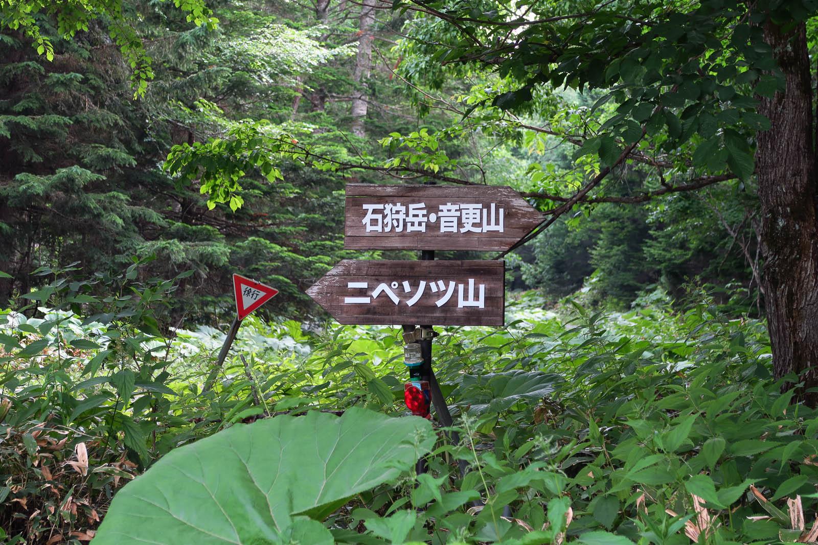 石狩岳〜音更山 <シュナイダーコース> 2015_b0243727_5142898.jpg