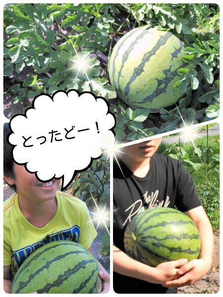 f0085327_15543660.jpg