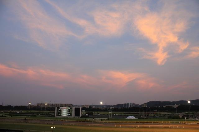 【府中東京競馬場】part 1_f0348831_18381480.jpg