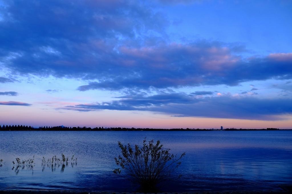 渡良瀬遊水地 冬の光の思い出3_f0050534_19555641.jpg