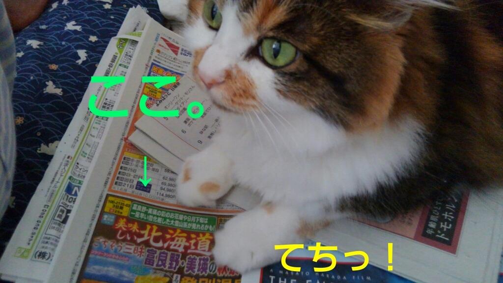 c0181639_00365002.jpg