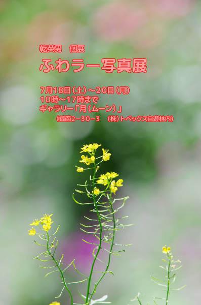 b0103798_5373096.jpg