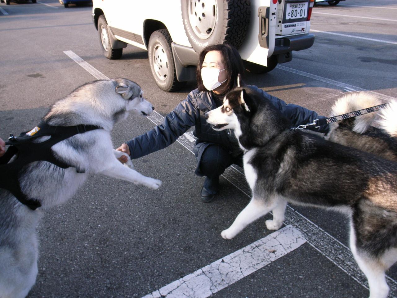 A Sequel to a story of Shikoku Pilgrimage, Dec.30th 2005_c0049299_2324258.jpg
