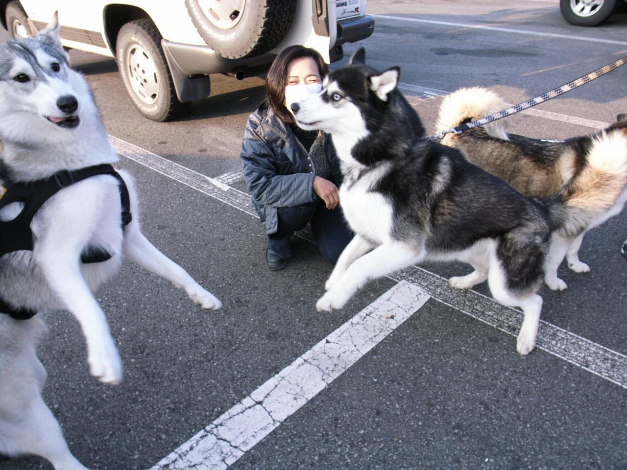 A Sequel to a story of Shikoku Pilgrimage, Dec.30th 2005_c0049299_232579.jpg