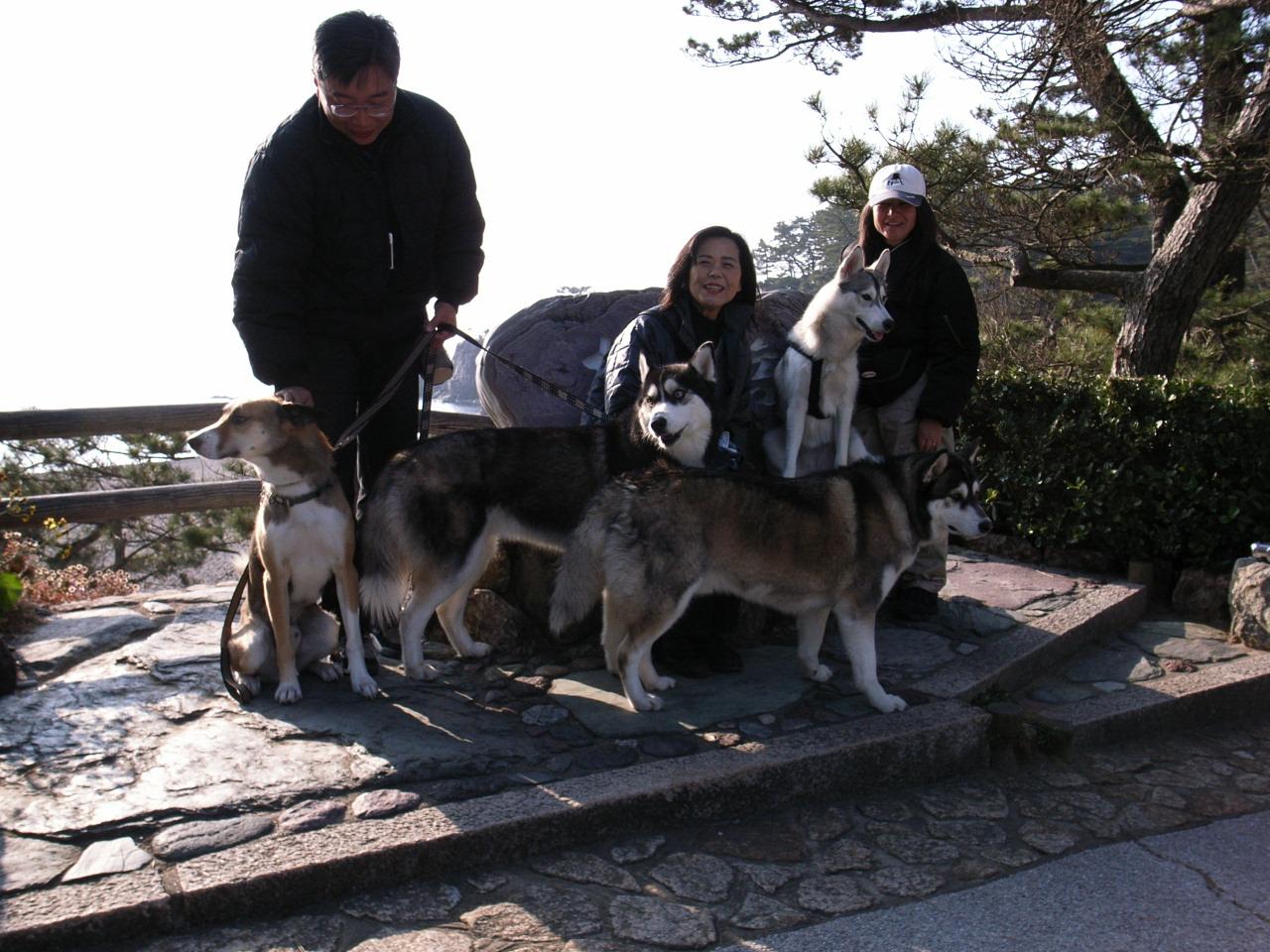 A Sequel to a story of Shikoku Pilgrimage, Dec.30th 2005_c0049299_236670.jpg
