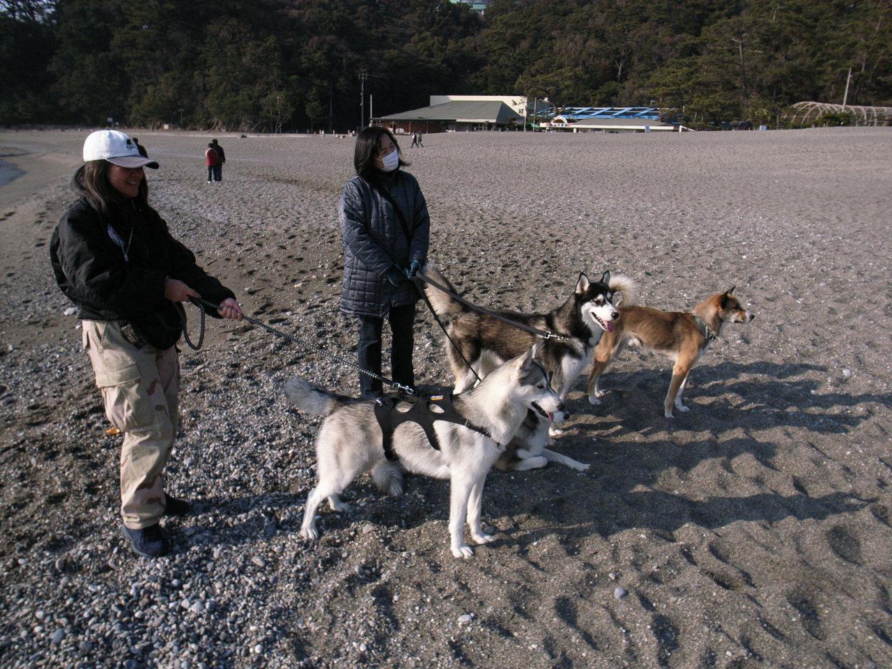 A Sequel to a story of Shikoku Pilgrimage, Dec.30th 2005_c0049299_2371570.jpg