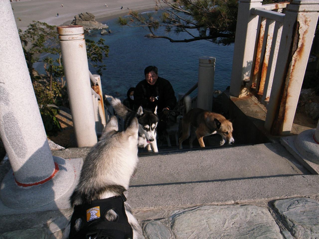 A Sequel to a story of Shikoku Pilgrimage, Dec.30th 2005_c0049299_2375347.jpg