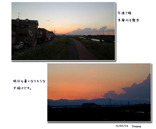 日々の事_c0051105_21573347.jpg