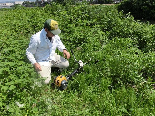 暑い中、強力な助っ人20名以上で完遂! 滝川の草刈り清掃_f0141310_7475110.jpg