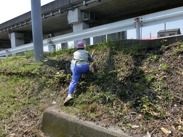 暑い中、強力な助っ人20名以上で完遂! 滝川の草刈り清掃_f0141310_7483864.jpg