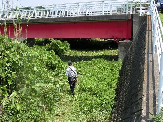 暑い中、強力な助っ人20名以上で完遂! 滝川の草刈り清掃_f0141310_7485078.jpg