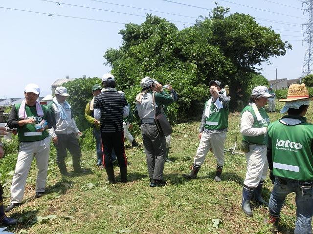 暑い中、強力な助っ人20名以上で完遂! 滝川の草刈り清掃_f0141310_7503281.jpg