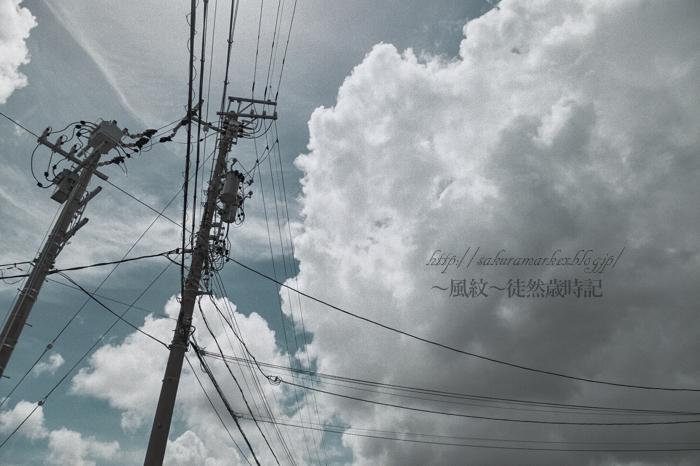 f0235723_2094410.jpg