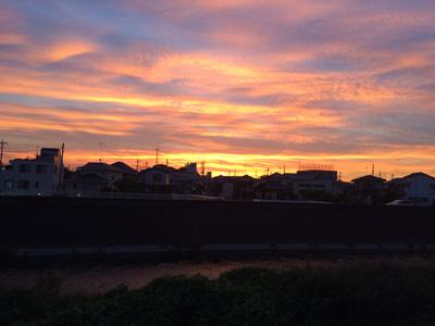 我が家の浅漬け~夕焼け~_b0277136_710285.jpg