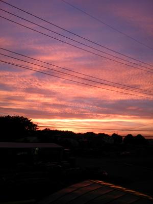 我が家の浅漬け~夕焼け~_b0277136_795787.jpg