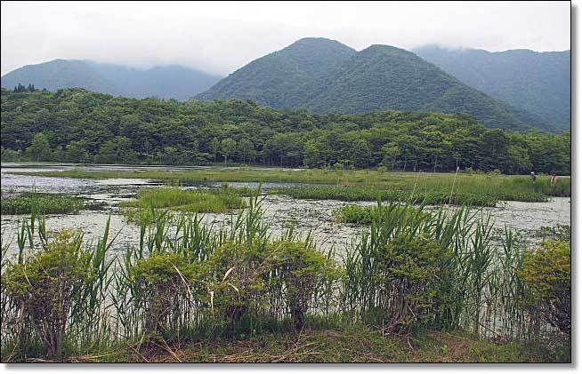 南会津・・・観音沼森林公園(2)_b0053765_16230792.jpg