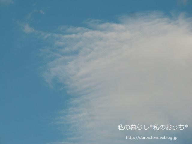 b0232891_1053161.jpg