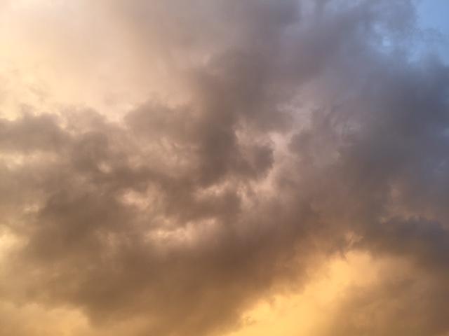 空を見上げる日_a0326106_2011385.jpg