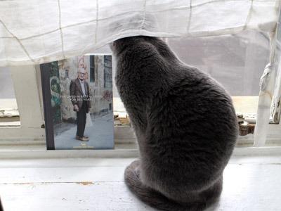 今日の2猫と、イギリスの回転寿司屋さん_b0199526_23533454.jpg