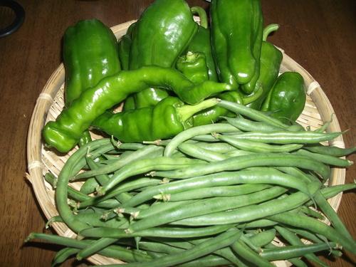 あれこれ野菜で..野菜だけの天ぷら!_b0137932_1042147.jpg