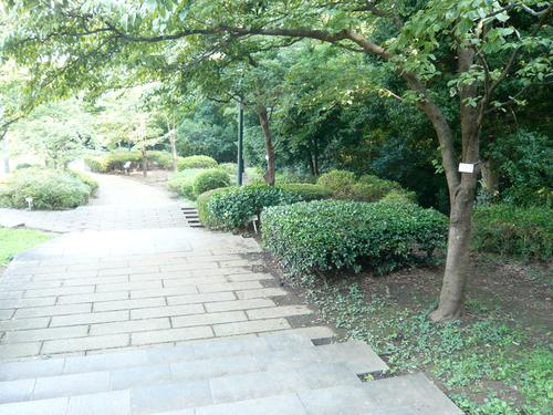 ラプソディ・イン・ブルー 大倉山記念館へ_c0121933_028271.jpg