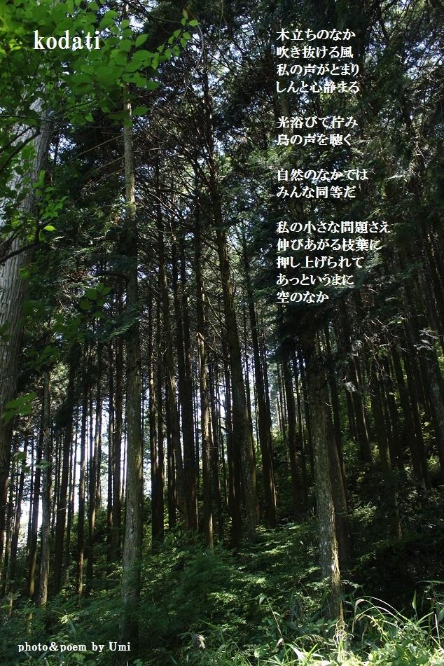 f0351844_10210185.jpg