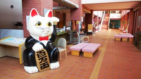 作業日誌(猫まみれ展釧路展陳列作業)_c0251346_1835732.jpg