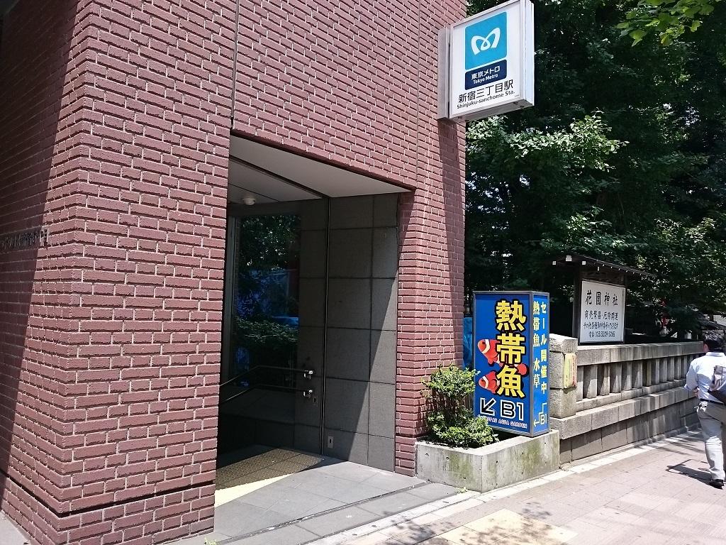 花園神社と熱帯魚_d0061857_10215775.jpg