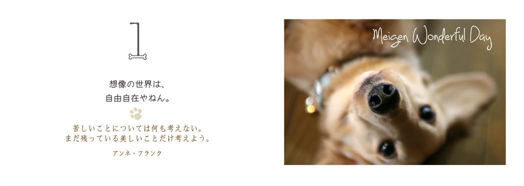 f0355165_11125041.jpg