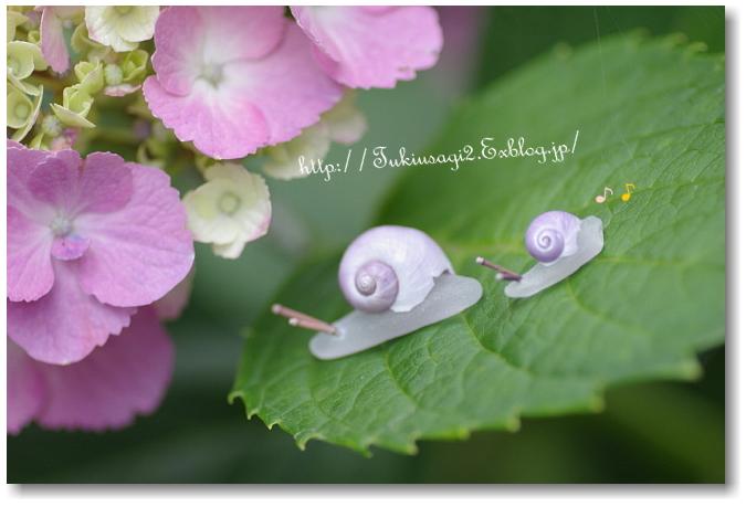 みんなの「紫陽花&雨の季節らしいすてきな一枚」をご紹介!_f0357923_024206.jpg