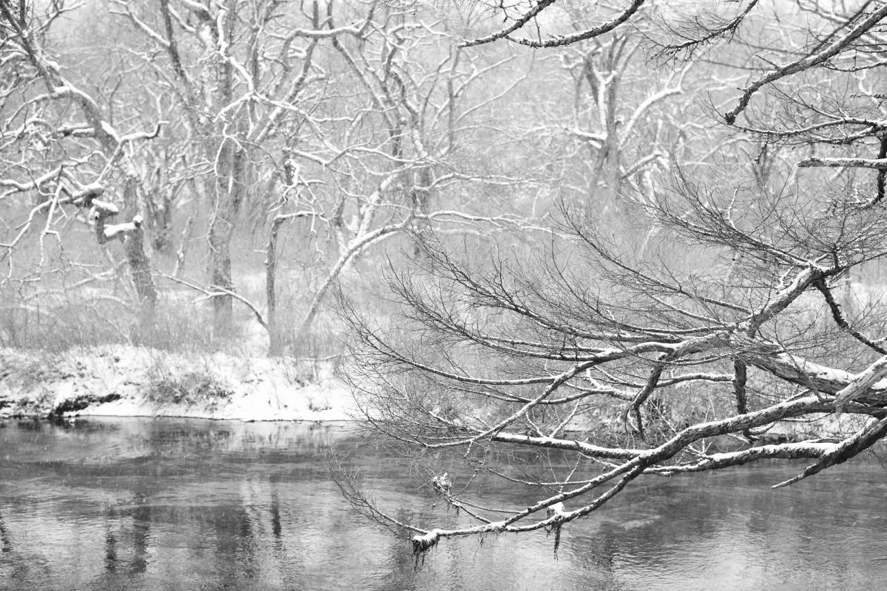 冬の朝_f0050534_08235662.jpg