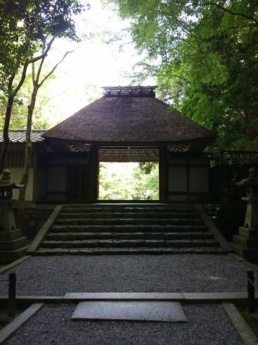 京都B級グルメ&カフェめぐり 1日目_d0083442_20075465.jpg