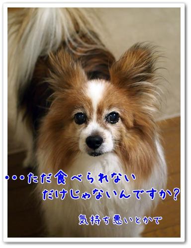d0013149_10213210.jpg