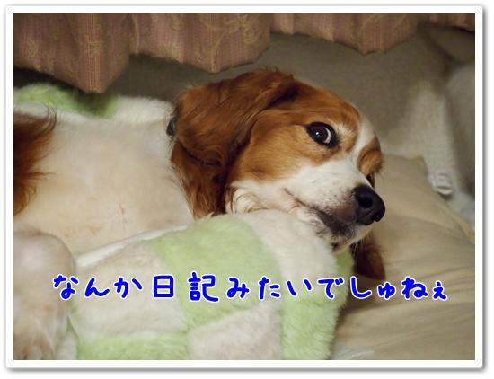 d0013149_1093598.jpg