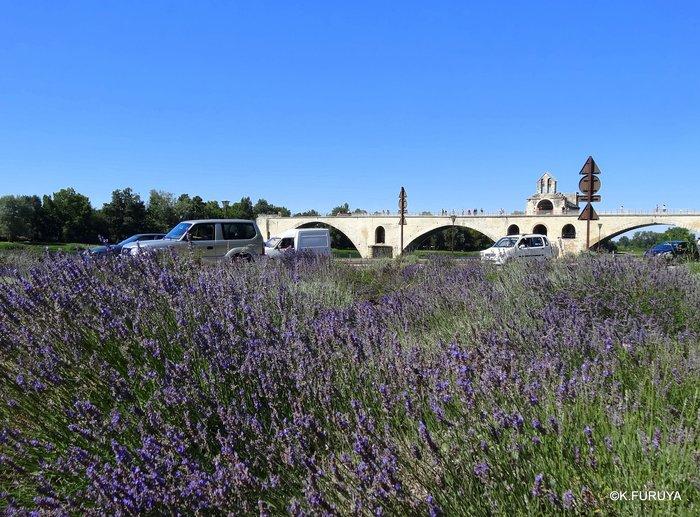 フランス周遊の旅 7 アヴィニョンの橋の上で♫_a0092659_153356.jpg