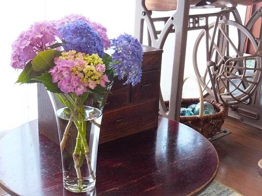 紫陽花の季節_d0246960_22412676.jpg