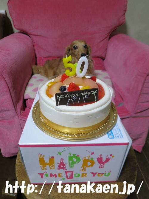 Happy Birthday to Me!_b0200291_22312886.jpg