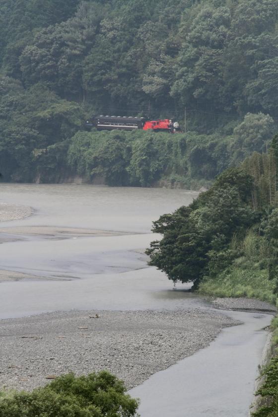 川の流れの向こうにジェームスくん - 2015年夏・大井川 -  _b0190710_1622455.jpg