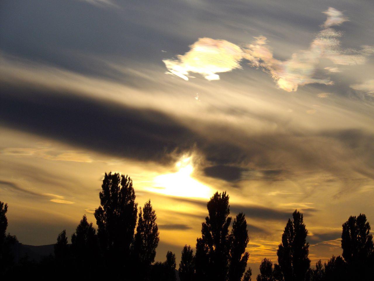 彩雲?_c0025115_19471832.jpg