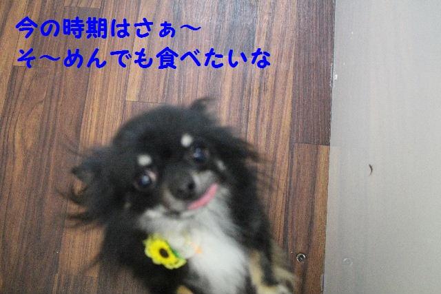 b0130018_11144451.jpg