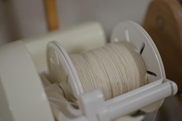 今年も棉栽培_b0042538_16294730.jpg