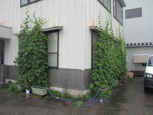 台風11号_b0062748_1471593.jpg